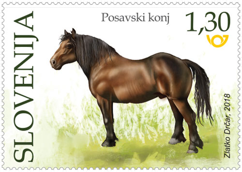 Posavski konj