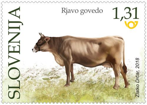 Rjavo govedo